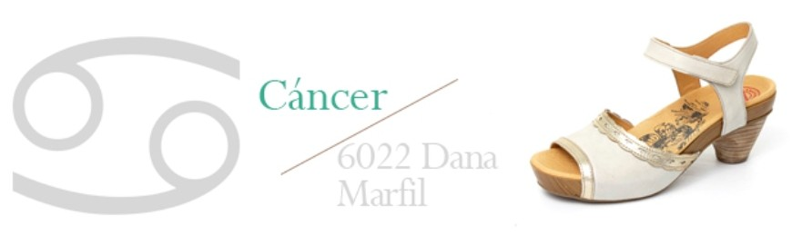 6022 Dana Marfil vs Cancer